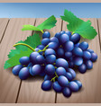 realistic purple grapes bunch with green leaves on vector image vector image