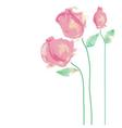 Watercolor roses vector image vector image