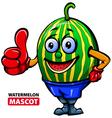 Watermelan Mascot vector image