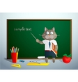 Cartoon cat in school vector image