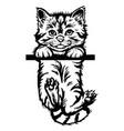cat peeking kitten - cheerful kitty isolated vector image vector image