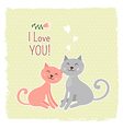 Cute cats valentine card vector image