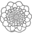 Exotic flower mandala isolated element