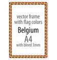 flag v10 belgium