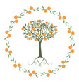 garland of leaves oranges and orange blossoms vector image