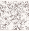 hand drawn line beige anemone flowers vector image vector image