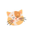 kissing cat isolated snout kitten kiss emoticon vector image vector image