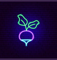 radish neon sign vector image