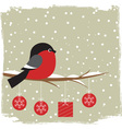 Winter card with bullfinch vector image vector image