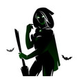 witch sorceress silhouette vector image