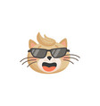 cat head isolated emoji snout face portrait vector image vector image