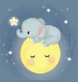 cute elephant sitting on moon vector image vector image