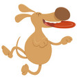 dog with frisbee cartoon character vector image