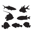 Fish Set Silhouettes on the white background vector image