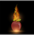 red apple with fire flame vector image vector image