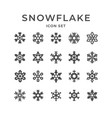 set icons of snowflake vector image vector image