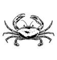 vintage crab template vector image