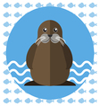 Abstract with a walrus on blue water vector image vector image