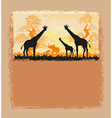 African savannah card vector image vector image