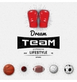 Dream Team insignia and labels for any use vector image