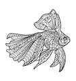 gold fish coloring book for adults vector image vector image