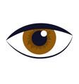 human eye cartoon vector image