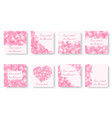 set of square backgrounds with pink petals vector image vector image