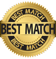Best match golden label vector image vector image