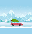 car with a christmas tree vector image