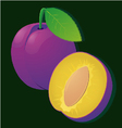 image of a ripe juicy plum slices on stripe vector image