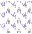 seamless pattern with lavender provence vector image