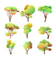 set colorful trees different shape with leaves vector image