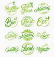 set organic local fresh healthy lettering vector image vector image