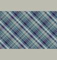 tartan plaid seamless fabric texture vector image vector image
