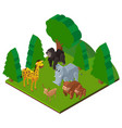 wild animals in forest in 3d design vector image vector image