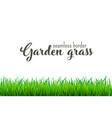 green grass border seamless vector image