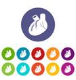heart organ icons set color vector image