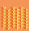 wheat spikes pattern background vector image
