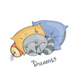 with a cheerful racoon sleeping on a pillows vector image vector image