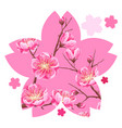 background with sakura or cherry blossom floral vector image vector image