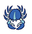 marine blue crab stylized vector image vector image