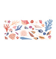seashells corals and starfishes collection vector image vector image