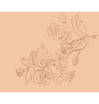 Sketch of Sakura Branch vector image vector image