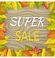 Super Sale Fall Banner Isolated Wooden Background vector image vector image