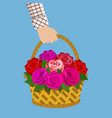 bouquet of roses in the basket vector image vector image