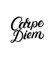 carpe diem hand written lettering quote vector image vector image