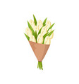 festive gift bouquet of white tulips in mate paper vector image