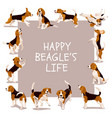 happy beagle life card with dogs vector image vector image
