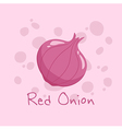 Red Onion Vegetable vector image vector image