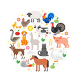 round composition of farm animals icons vector image vector image